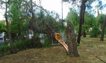 Kαταστροφές στη Μεσσήνη από την κακοκαιρία