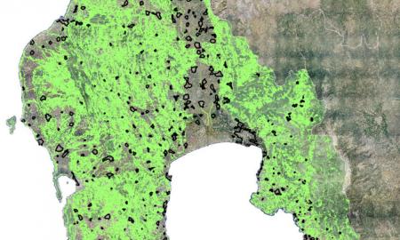 Παράταση 40 μέρες στους δασικούς χάρτες ως τις 7/9