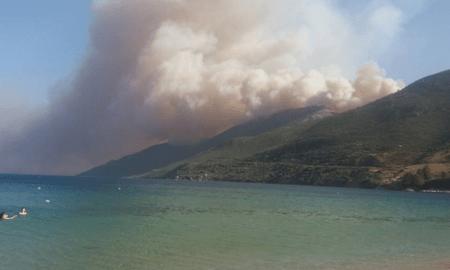 Μήνυση κατά παντός υπευθύνου από την αντιπεριφερειάρχη Λακωνίας για τις πυρκαγιές στη Μάνη