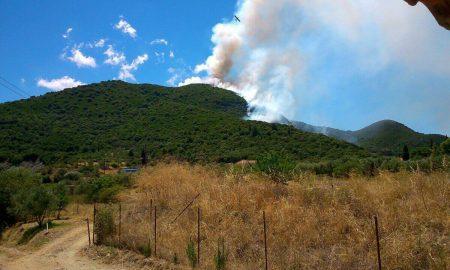 Υπό έλεγχο η πυρκαγιά στο Σουληνάρι-150 στρέμματα στάχτη!