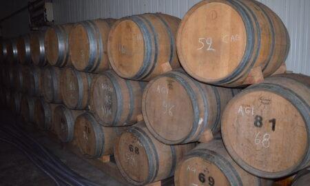 Σύλλογος Οινοποιών Μεσσηνίας: Η ισχύς εν τη ενώσει για να αναδειχτεί το Μεσσηνιακό κρασί