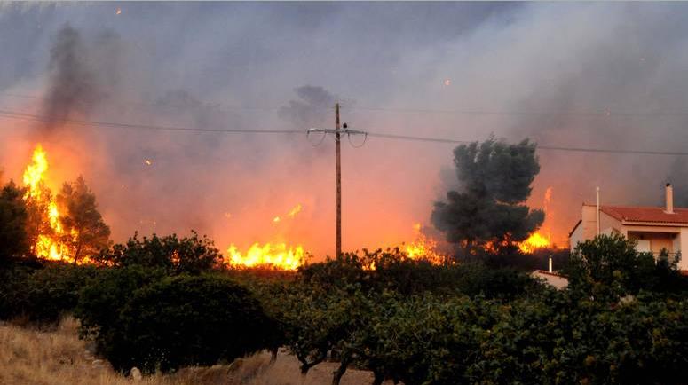 Μητσοτάκης για φωτιές: Συντονισμένη δράση και όχι θεωρίες συνωμοσίας – Τι απαντά το Υπουργείο