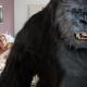 """""""Η ολοκαίνουργια… Καινή Διαθήκη"""" από τη Νέα Κινηματογραφική Λέσχη Καλαμάτας"""