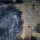 Αναδασωτέες όλες οι καμένες εκτάσεις – Τι αναφέρει η εγκύκλιος