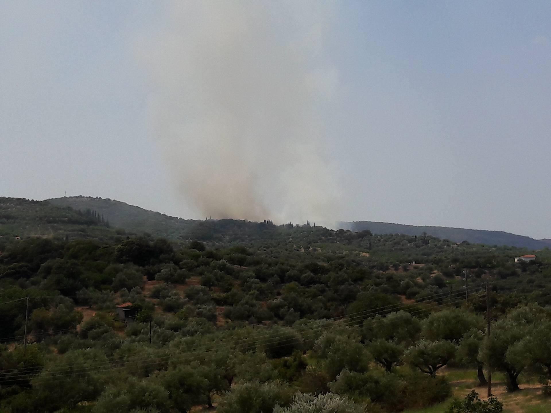 Υπό μερικό έλεγχο τέθηκε η πυρκαγιά στην Καστάνια στο Πεταλίδι