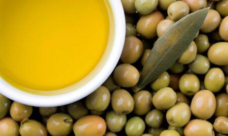 Περιμένουν καλή χρονιά για ελιά και ελαιόλαδο στην Πελοπόννησο