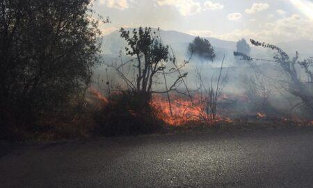 Φωτιά στο Κακαλέτρι: Τρία τα ενεργά μέτωπα-Ενισχύονται οι δυνάμεις- 250 στρέμματα καμμένης γης!