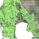 Ολοκληρώθηκε η ανάρτηση των δασικών χαρτών