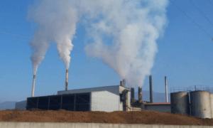 Κοζομπόλη-Κωνσταντινέας: Στη Βουλή το θέμα των πυρηνελαιουργείων Μελιγαλά
