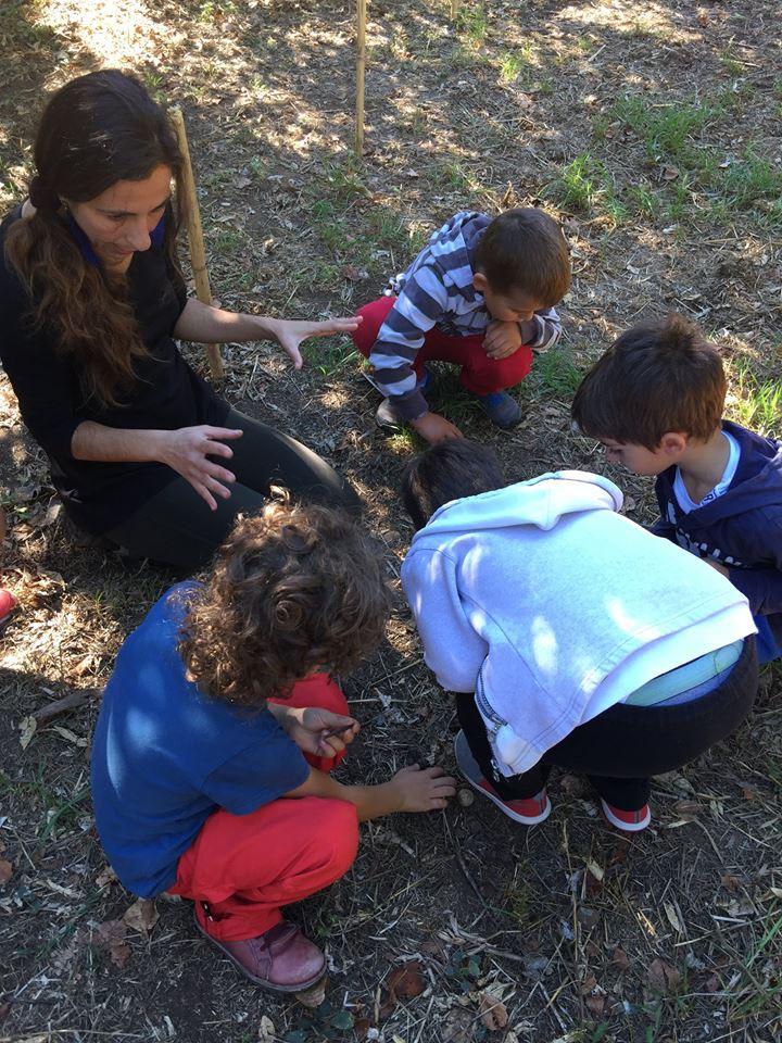 Το 1ο Νηπιαγωγείο Γαργαλιάνων επισκέφτηκε το Αγρόκτημα Φοίφα