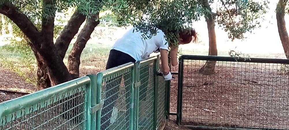 Συντήρηση στο πάρκο του Αλμυρού από εργαζόμενους τoυ Praktiker
