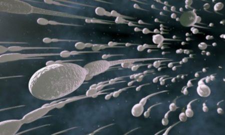 Οι άντρες πρέπει να εκσπερματώνουν 21 φορές τον μήνα λένε οι επιστήμονες