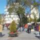 """Ομοσπονδία Εμπορίου και Επιχειρηματικότητας Πελοποννήσου: Κρούει τον κώδωνα του κινδύνου- """"Να μην δημιουργηθεί νέα γενιά ανασφάλιστων"""""""