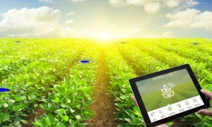 Ένωση Μεσσηνίας: Με τεχνολογία στο χωράφι…κέρδος για τον παραγωγό!