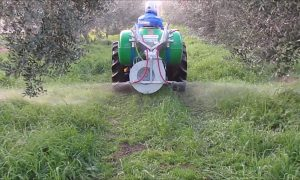 ΔΑΟΚ Μεσσηνίας: Οδηγίες για τους ψεκασμούς με ζιζανιοκτόνα