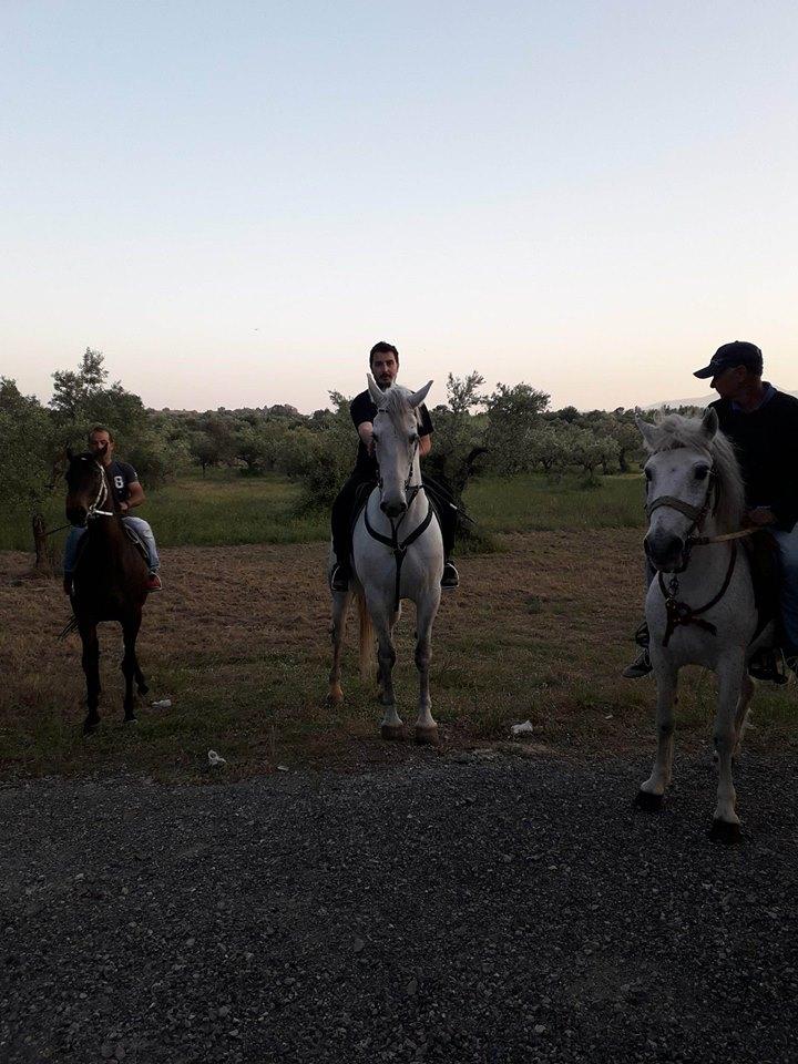 Πλατύ: Μετά τον Εσπερινό ευλογήθηκαν και τα άλογα