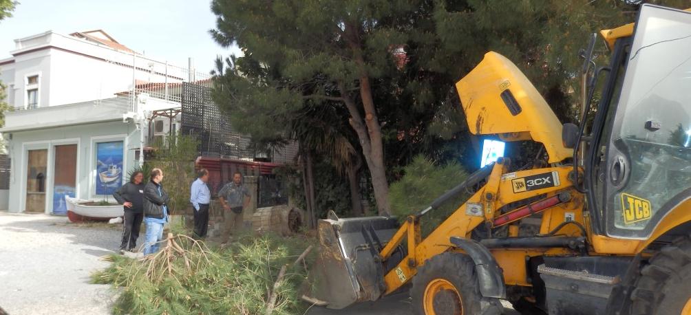 """Ξεκίνησαν οι εργασίες στο πάρκο του """"Πανελληνίου"""""""