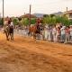 Live οι ιπποδρομίες του Αη Γιώργη από το Πλατύ