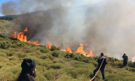 Πυρκαγιά στα Γιαννιτσάνικα έκαψε 100 τ.μ.- Μία σύλληψη