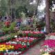 7η Ανθοκομική Έκθεση Καλαμάτας: 10 ημέρες με λουλούδια και συναυλίες!