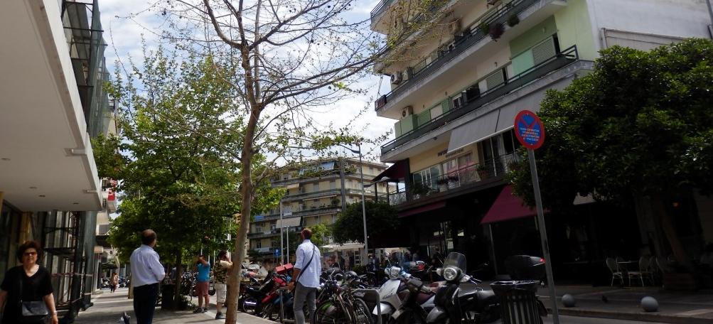 """Δήμος Καλαμάτας: """"Σκοτώνουν"""" τα πλατάνια καταγγέλλει ο Δήμος Καλαμάτας-Προειδοποιεί με μηνύσεις"""