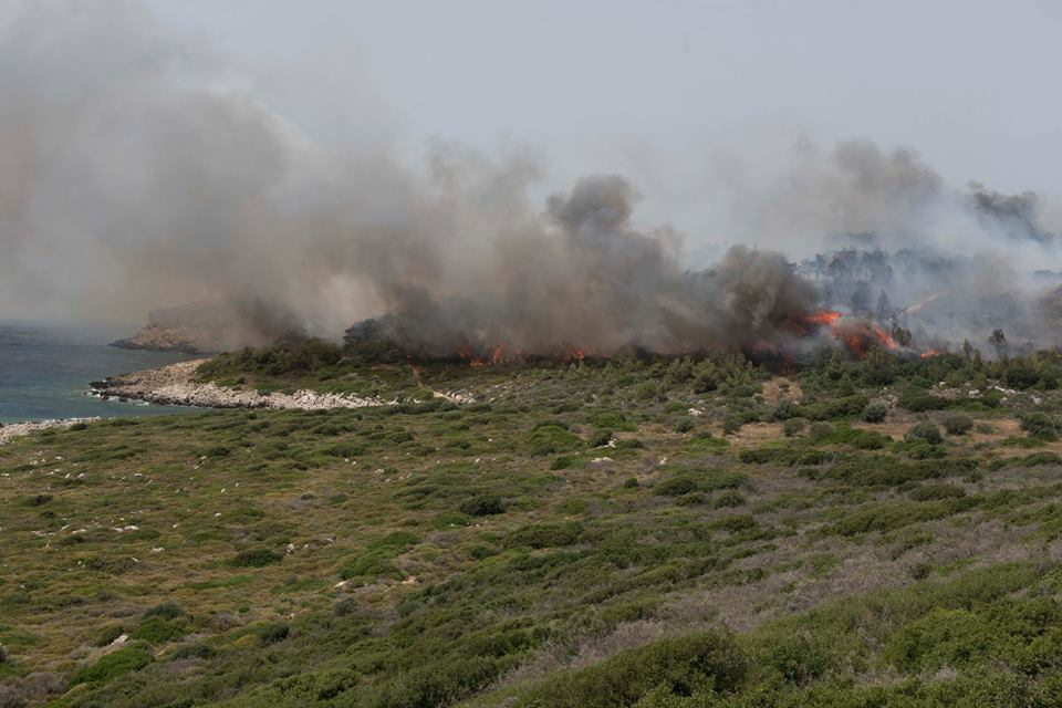 Kατασβέστηκε η μεγάλη φωτιά στο Νιόκαστρο της Πύλου – Πάνω από 50 στρέμματα καμένη γη!