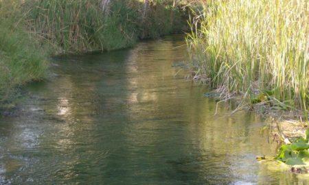 """Λυμπεροπούλου: """"Χωρίς ελέγχους τα αρδευτικά νερά της Πελοποννήσου"""""""
