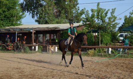 Iππικός Όμιλος Καλαμάτας: Στην Κροατία με την Εθνική Δρούγας κι Αντωνόπουλος