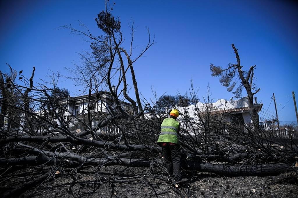 Τραγωδία δίχως τέλος στο Μάτι: Στους 98 οι νεκροί από τη φονική πυρκαγιά