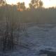 Δήμος Καλαμάτας: Κατασβέστηκαν οι 2 πυρκαγιές που ξέσπασαν σε Ασπροπουλιά και Θουρία