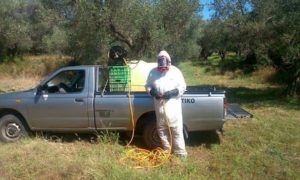 Τι ζητάνε οι αγροκτηνοτρόφοι για την δακοκτονία