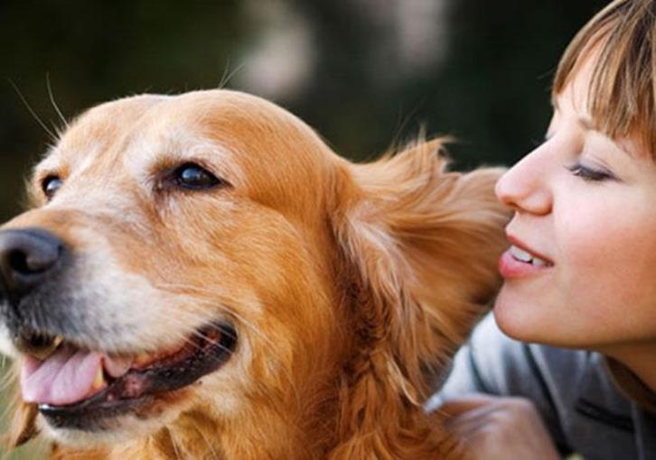 Ημέρα αγάπης και ευαισθητοποίησης για όλα τα ζώα η 4η Οκτωβρίου
