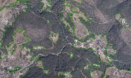 Δασικοί χάρτες: Πώς θα σώσετε χωράφια και επιδοτήσεις – Οδηγός του ΟΠΕΚΕΠΕ για τους αγρότες