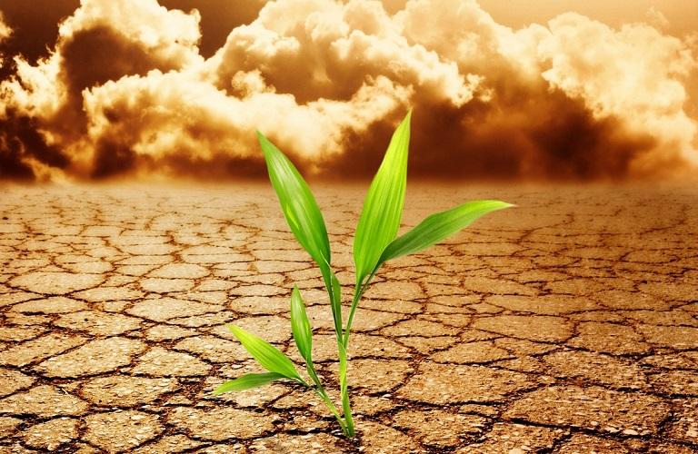 «Η κλιματική αλλαγή επιβάλλει νέο τρόπο σκέψης και νέα εργαλεία»