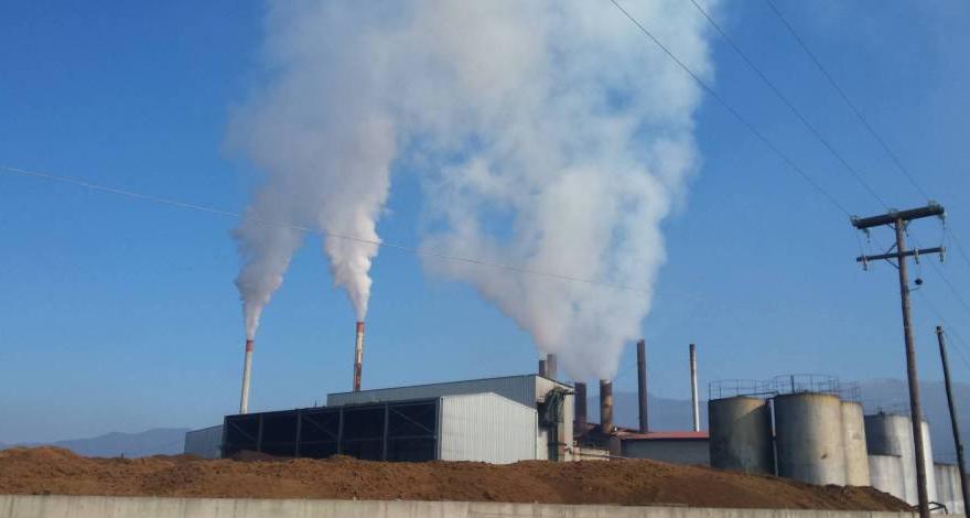 Κλιμάκιο για άμεσο έλεγχο των 5 πυρηνελαιουργείων Μεσσηνίας