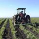 """ΣΥΡΙΖΑ: """"Ο εμπαιγμός των Ελλήνων αγροτών συνεχίζεται"""""""