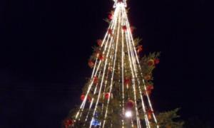 ΔΙΟΚΛΗΣ: Την Παρασκευή 13 Δεκεμβρίου φωταγωγείται το δέντρο στο ΒΙΟΠΑ