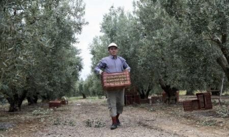 Νέο επίδομα 14.000 ευρώ στους αγρότες