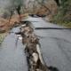 400.000 ευρώ από Χαρίτση για την αποκατάσταση των ζημιών στο Δήμο Καλαμάτας