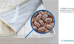 C.L.Cleaning Group: Βαθύς βιολογικός καθαρισμός στρωμάτων χωρίς τη χρήση χημικών