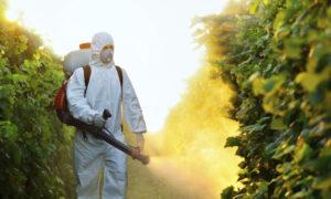 ΔΑΟΚ Μεσσηνίας: Τι να προσέξουν οι καλλιεργητές στους ψεκασμούς με ζιζανιοκτόνα