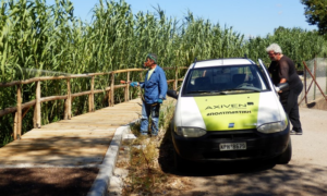 Ξεκινούν οι ψεκασμοί κατά των κουνουπιών σε περιοχές της Καλαμάτας