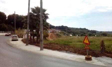 Τσιμεντώθηκαν τα δέντρα στον Ριζόμυλο!