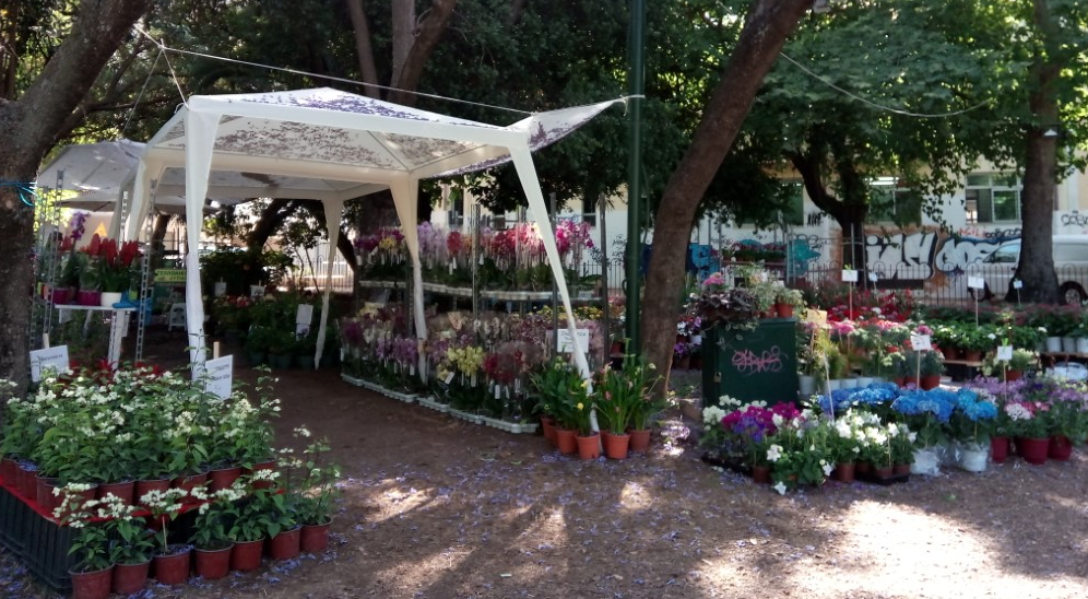 Aνοίγει απόψε τις πύλες της η 8η Ανθοκομική-Γέμισε το Πάρκο λουλούδια!