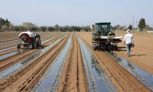 Νέα παράταση υποβολής αιτήσεων για το Υπομέτρο 6.3 «Ανάπτυξη μικρών γεωργικών εκμεταλλεύσεων»