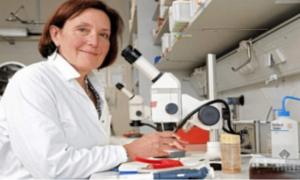 Δολοφόνησαν την Αμερικανίδα βιολόγο στην Κρήτη-Προσαγωγές ατόμων και λήψη DNA