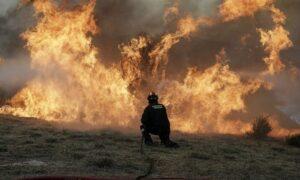 17 στρέμματα έκαψε η πυρκαγιά στη Μεσσήνη