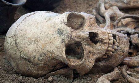 Κρανίο 210.000 ετών που βρέθηκε στη Μάνη, το αρχαιότερο δείγμα Homo sapiens σε όλη την Ευρασία