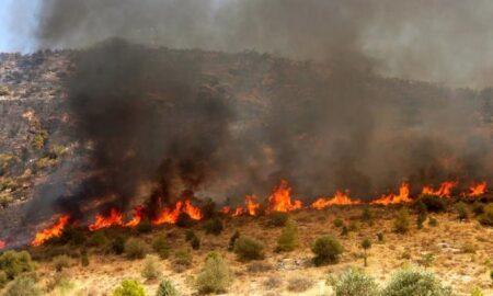 Δύο συλλήψεις για πυρκαγιές σε Καλαμάτα και Πύργο