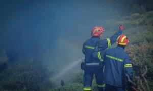Πυροσβεστική: 'Ολα τα μέτωπα υπό έλεγχο στη Μεσσηνία